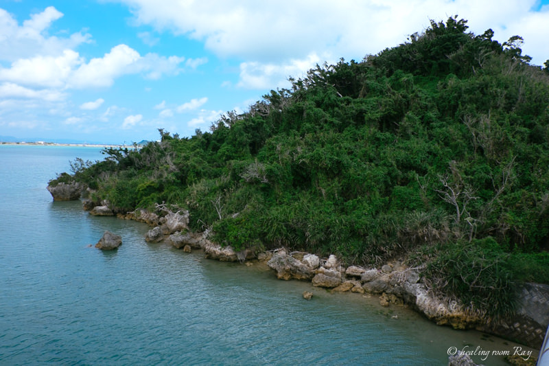 藪地島へ拝みに行ってきました